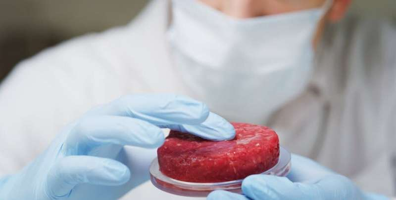 'Cultured' meat could create more problems than it solves
