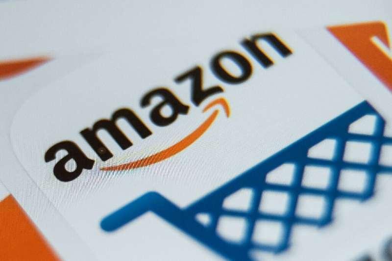 Deux ONG et l'union syndicale Solidaires ont dénoncé le 24 novembre 2019 l'impact social et environnemental d'Amazon