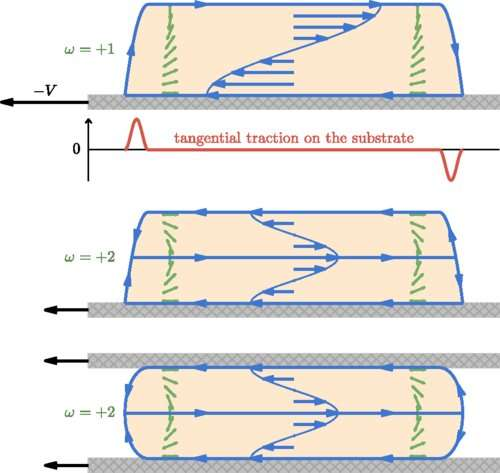 Discovery reveals tractionless motion is possible