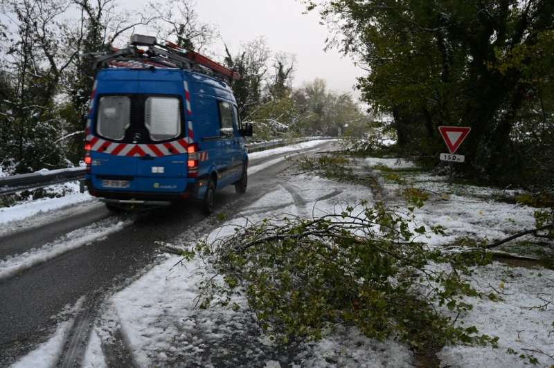 Downed trees and branches had cut power to some 300,000 homes.
