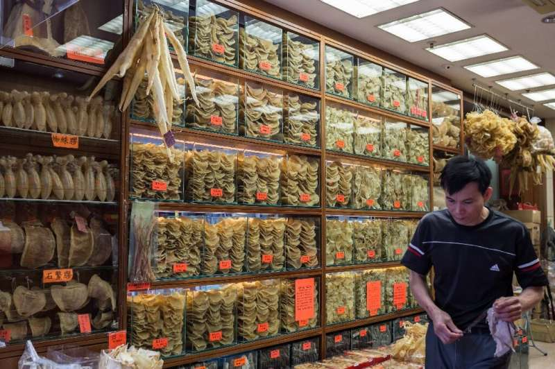 Dried fish and shark fin on sale in a Hong Kong shop