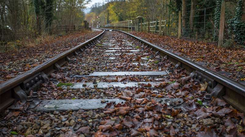 Dry ice could prevent rail delays caused by 'leaves on the line'