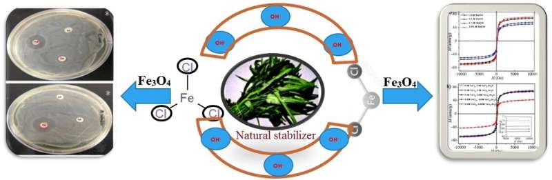 Eco-friendly method for the synthesis of iron oxide nanoparticles