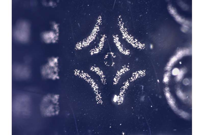 'Electroadhesive' stamp picks up and puts down microscopic structures