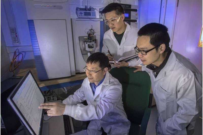 'Electron shuttle' protein plays key role in plant cell-wall construction