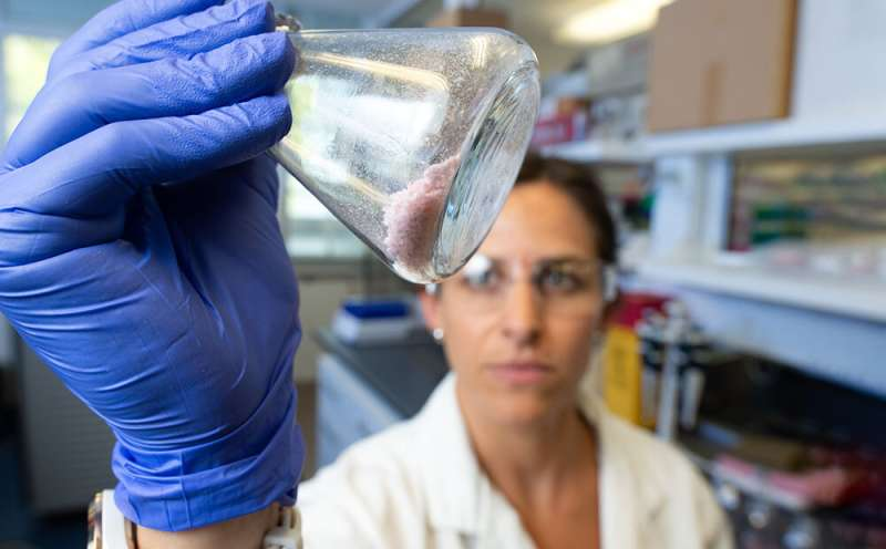 Enzyme discovery could keep tonnes of polyester from landfill
