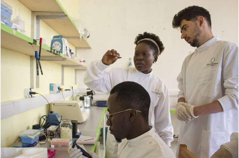 El kit de herramientas de enzimas hace que la biotecnología sea accesible a nivel mundial