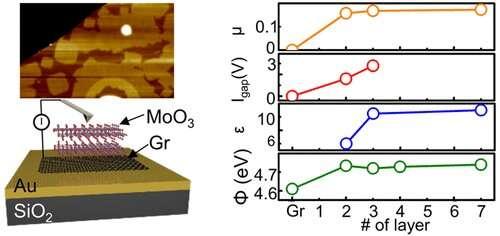 Epitaxially-grown molybdenum oxide advances as a bulk-like 2-D dielectric layer