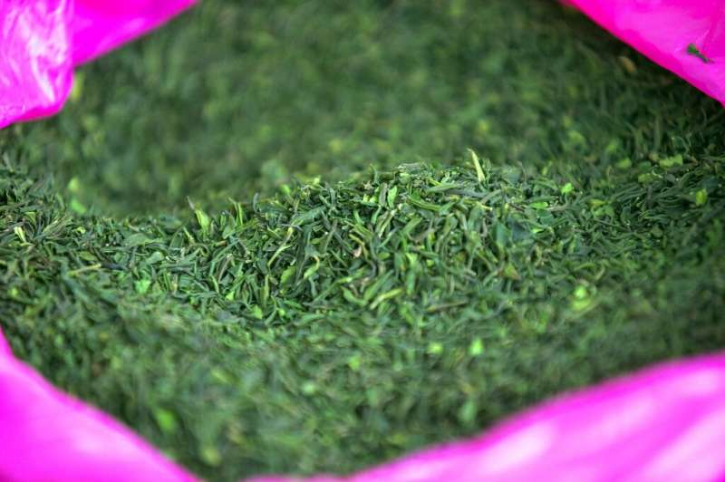 Ethiopia's state-run Substance Rehabilitation Centre tackles khat usage, in a country where chewing the leafy stimulant is commo