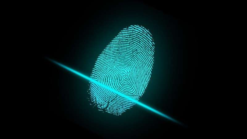 Every transistor has a unique quantum fingerprint—but can it be used as a form of ID?