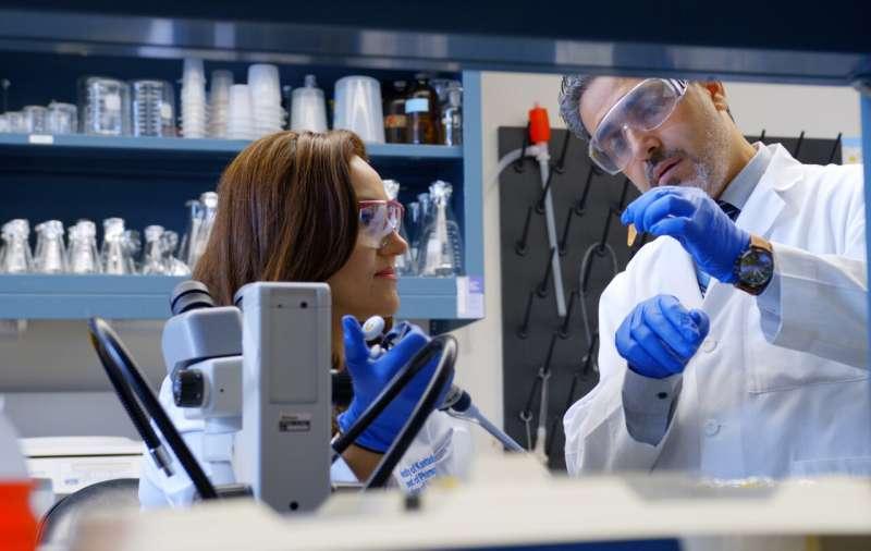 Fat-absorbing XX chromosomes raise heart disease risk in women