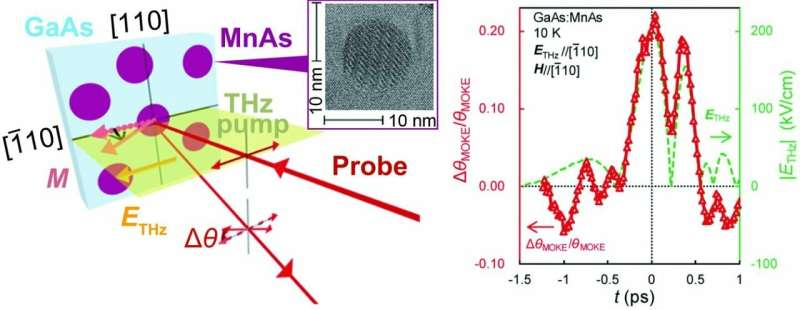 Ferromagnetic nanoparticle systems show promise for ultrahigh-speed spintronics