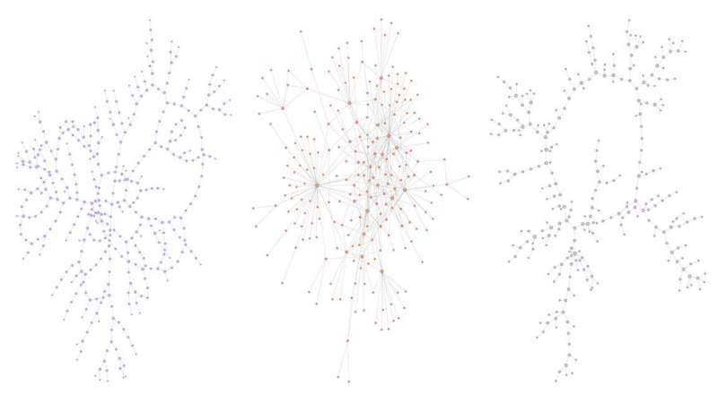 Finding missing network links could help develop new drugs, stop disease, ease traffic