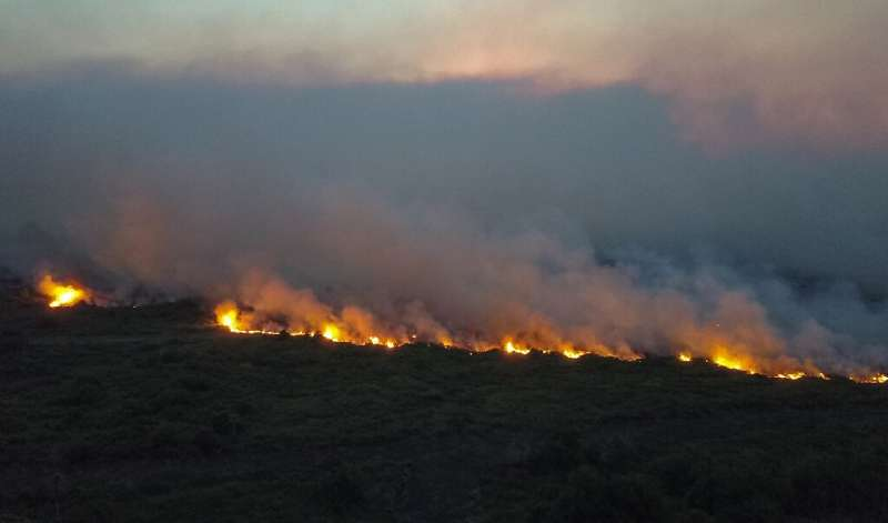 Fires have ravaged the Pantanal marshland area in Brazil's Mato Grosso do Sul state