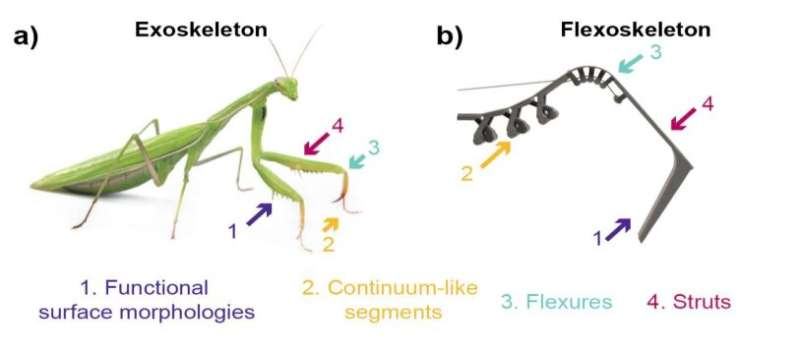Flexoskeleton printing: fabricating flexible exoskeletons for insect-inspired robots