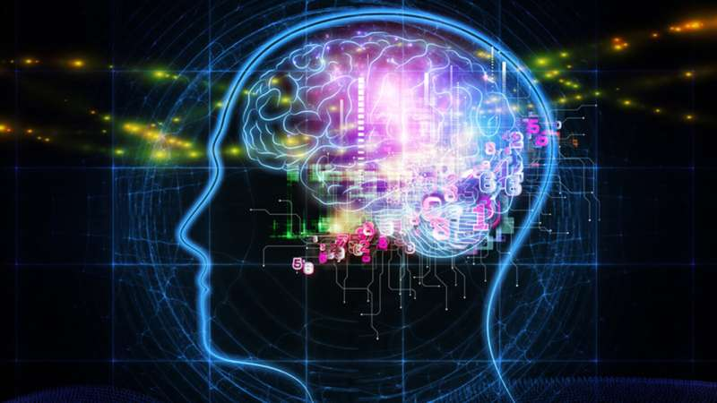Framework improves 'continual learning' for artificial intelligence