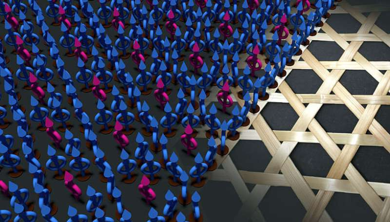 ++**From Japanese basket weaving art to nanotechnology with ion beams