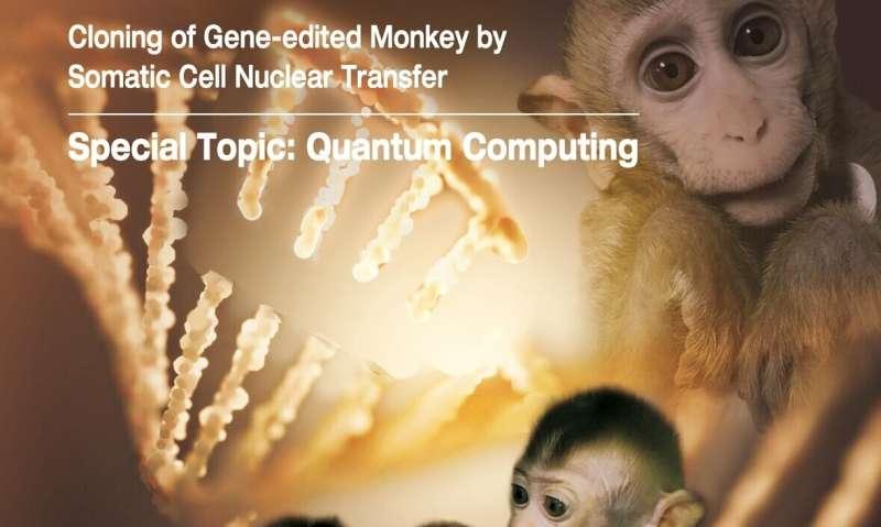 Gene-edited disease monkeys cloned in China