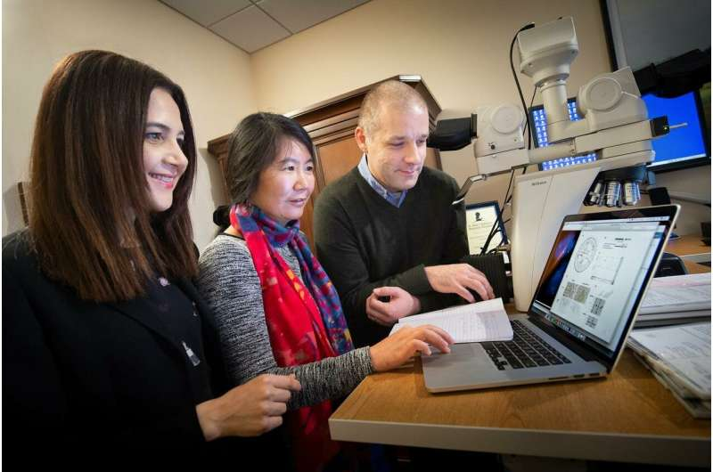 Genomic testing of a single patient reveals a gene commonly mutated in pediatric melanoma