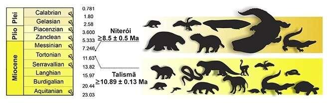 **Giant animals lived in Amazonian mega-wetland