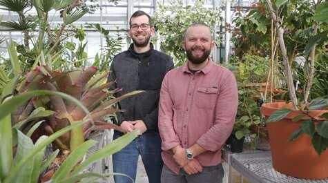 GMOs not main culprit in monarch butterfly decline