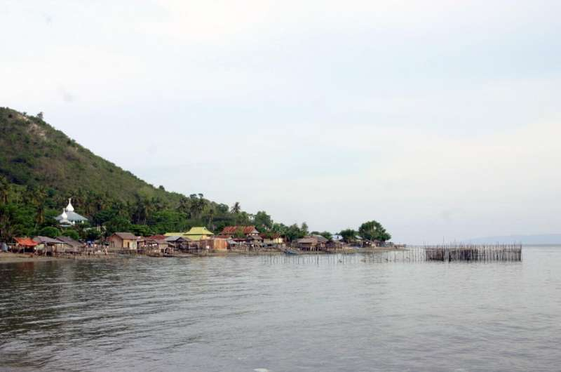 Harnessing nature's defences against tsunamis