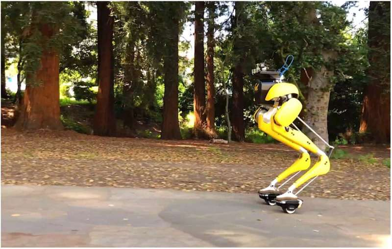 Head-turning Cassie Cal makes campus moves on hovershoes