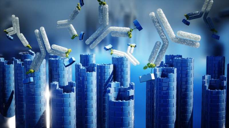 Hiring antibodies as nanotechnology builders
