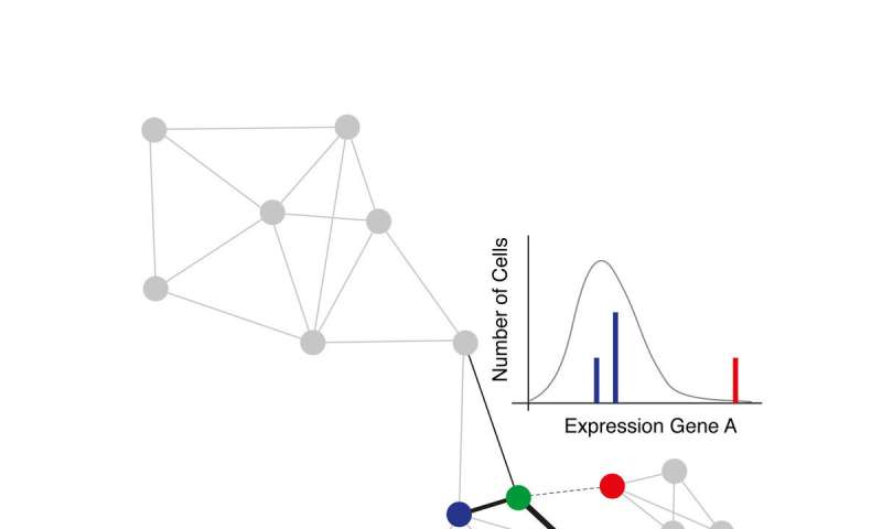 How gene expression noise shapes cell fate