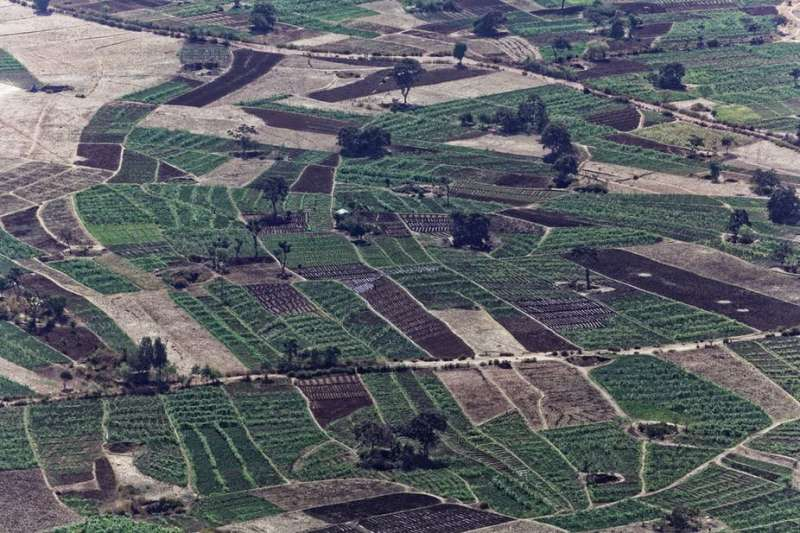 How investment in irrigation is paying off for Ethiopia's economy