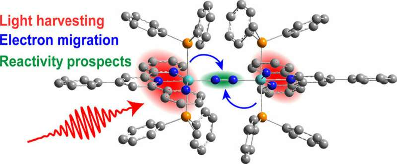 How sunlight energizes electrons to break nitrogen and form ammonia