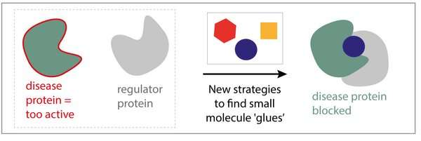 How to find molecular glues to effectively target diseases