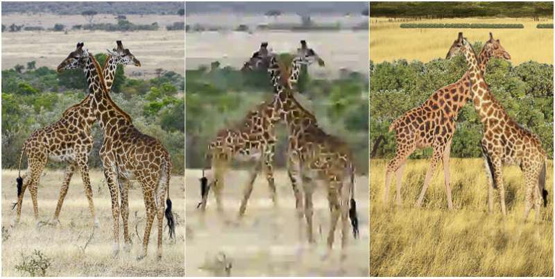 Humans compress images better than algorithms