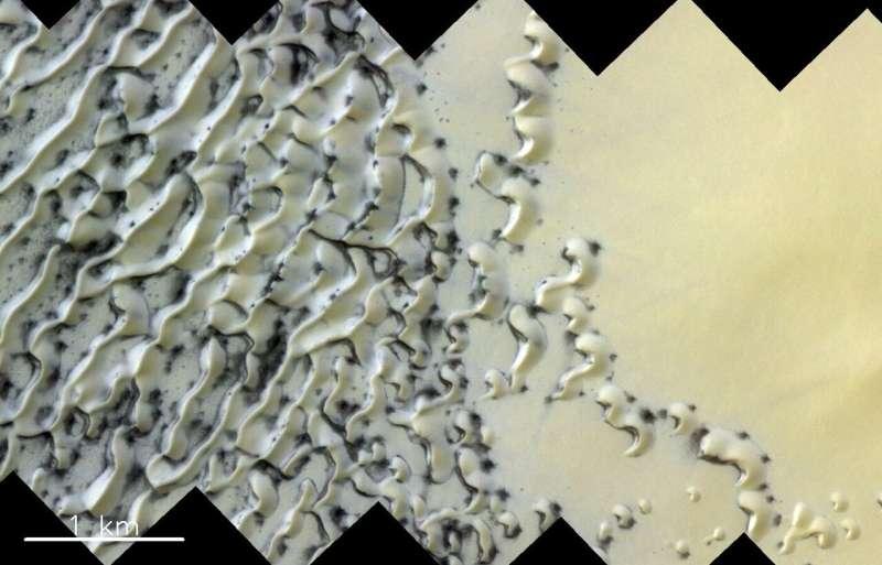 Image: North polar dunes on Mars