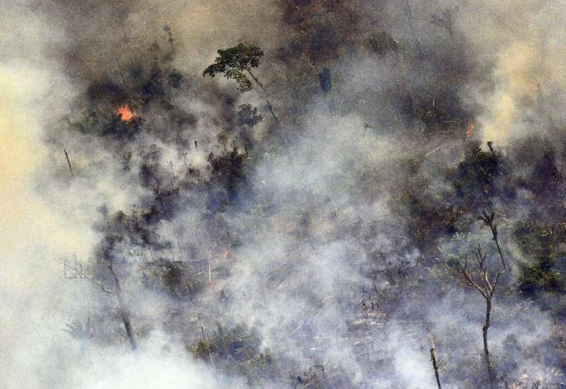 Images of smoke-filled horizions from blazes burning out of control across the Amazon basin made headlines around the world earl