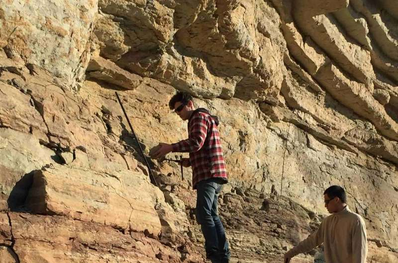 In ancient oceans that resembled our own, oxygen loss triggered mass extinction