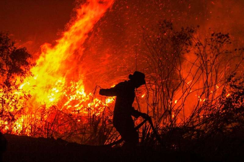 Indonesia suffers forest fires annually but this year's appear to be the worst since 2015