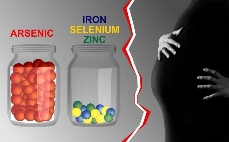 Infertility Can Be Caused by Microelements Disbalance, RUDN Medics Say