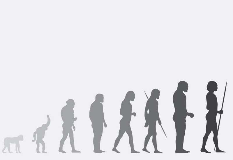 It's time we stopped human evolution, geneticist claims