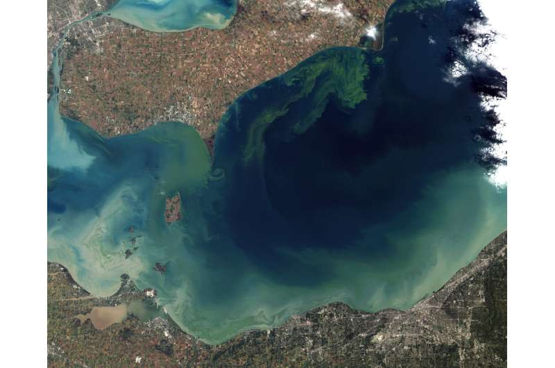 Lake Erie's toxic algae blooms: Why is the water turning green?
