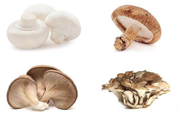 Large, long-term study suggests link between eating mushrooms and a lower risk of prostate cancer