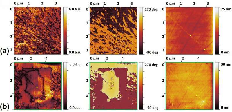 Laser-fabricated crystals in glass are ferroelectric