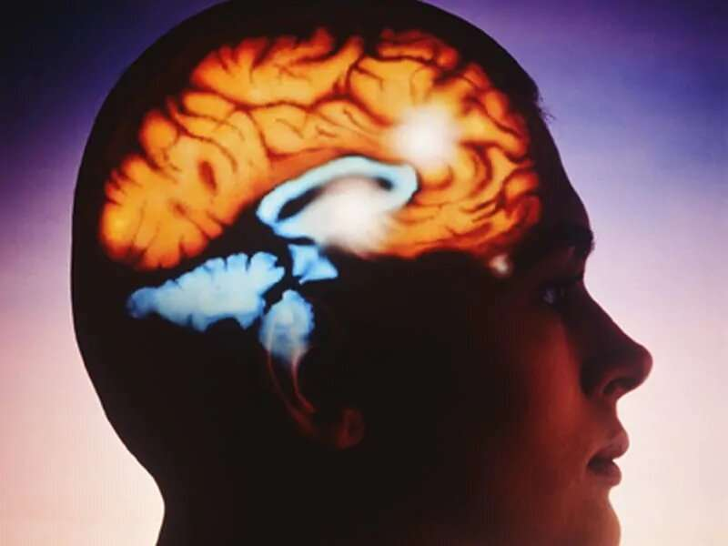 Light, incremental physical activity can help reduce brain aging
