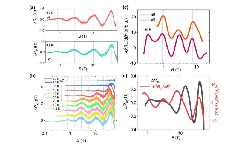 Log-periodic quantum oscillations and discrete scale invariance in Dirac materials
