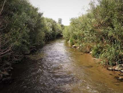 Managing stormwater and stream restoration projects together