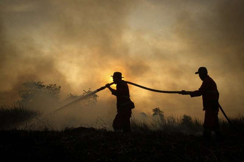 Mankind's reliance on fossil fuels usually receives much of the blame for climate change but scientists say that deforestation h