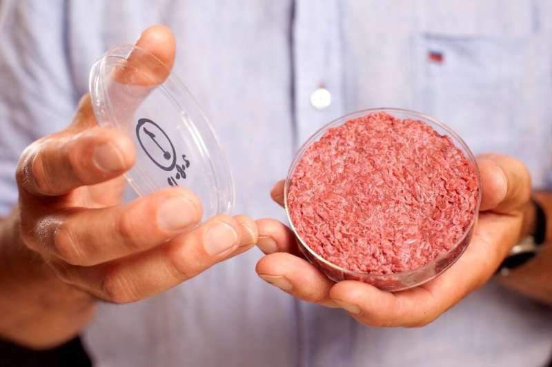 Mark Post, a professor at Maastricht University, holds the world's first lab-grown beef burger
