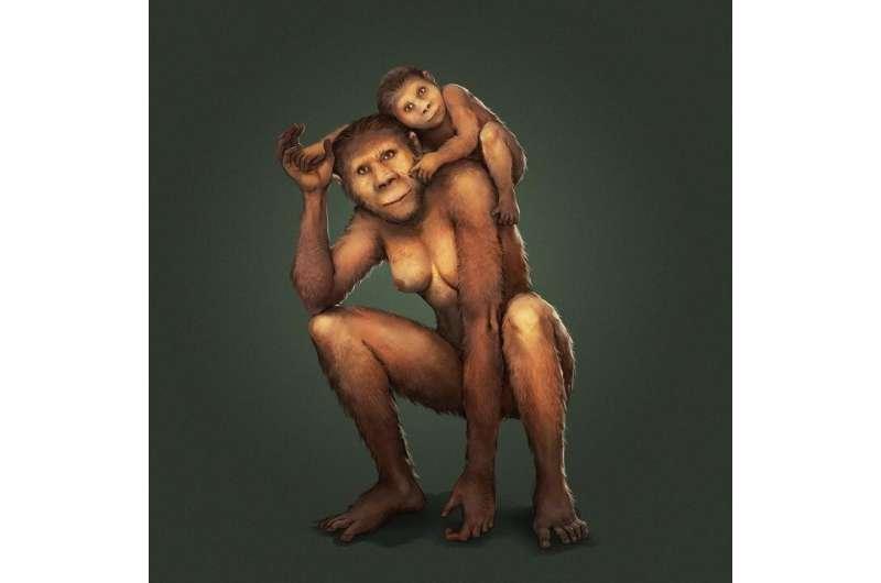 Maternal secrets of our earliest ancestors unlocked