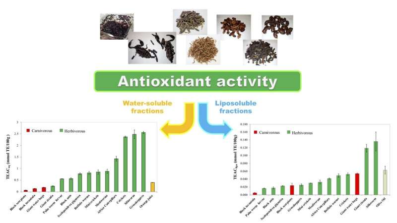 Meet the six-legged superfoods: Grasshoppers top insect antioxidant-rich list