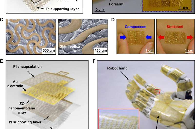 Metal-oxide semiconductor nanomembrane-based multifunctional electronics for wearable-human interfaces